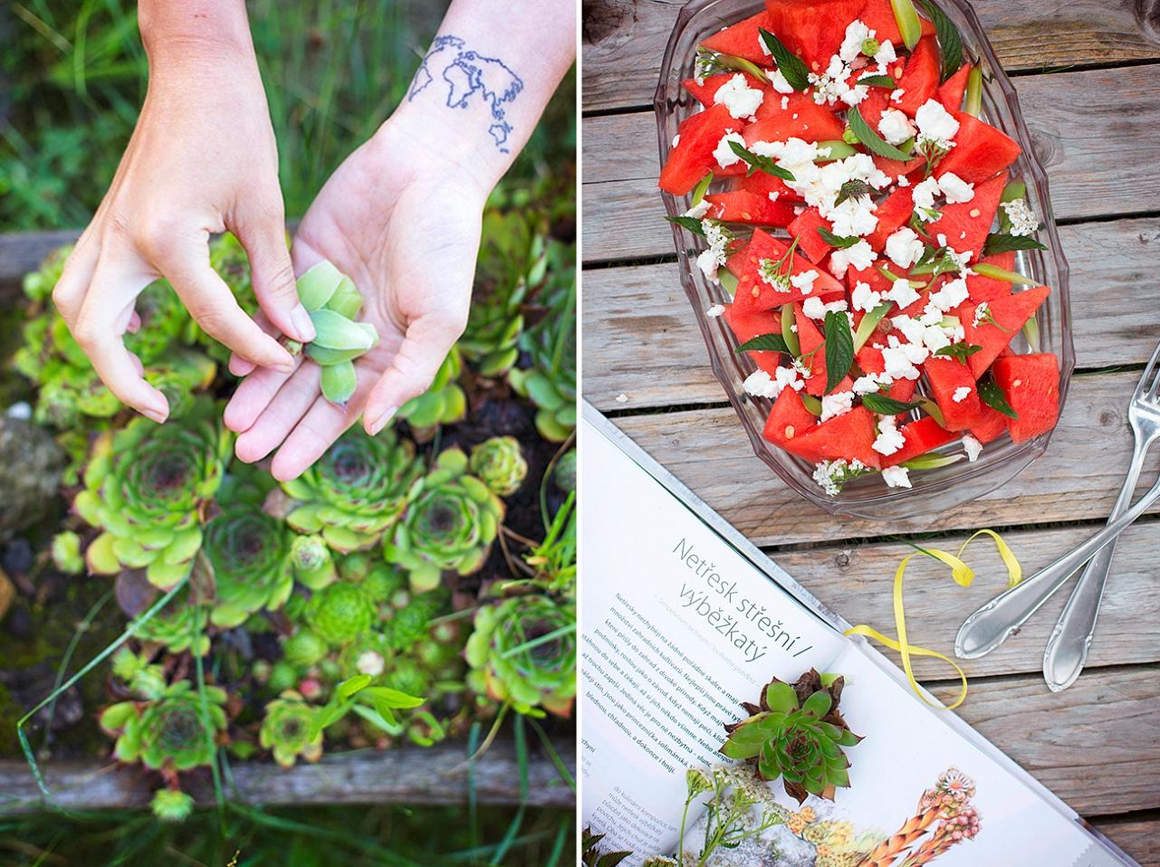 Melounový salát - feta, máta, netřesk